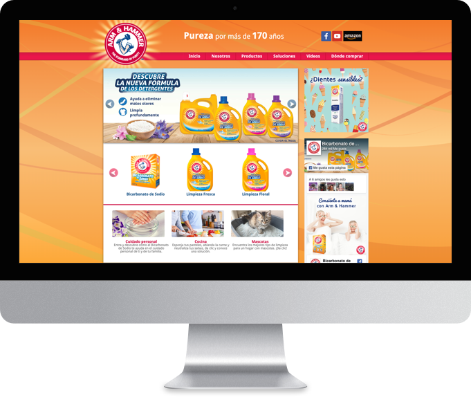 Sitio web Arm And Hammer